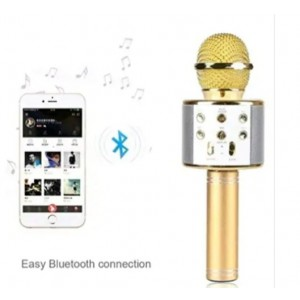 WS-858 Rechargeable Wireless Karaoke Inbuilt Speaker with Audio recording and Bluetooth Microphone